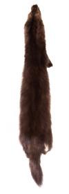Изображение Шкурка соболя коричневого